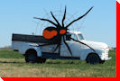 Large Spider - Biggar, Saskatchewan
