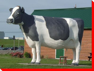 Ms. Claybelt the Cow - Temiskaming Shores, Ontario