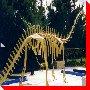 Brontosaurus - Sudbury, Ontario