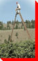 World's Tallest Tripod Orchard Ladder - Summerland, British Columbia