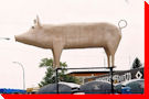 World's Largest Pig (maybe), - Englefeld, Saskatchewan