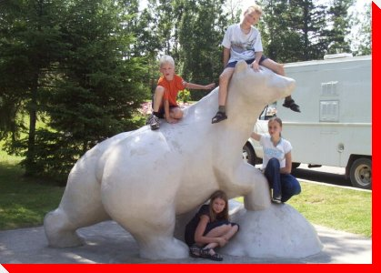 Polar Bear - Thunder Bay, Ontario